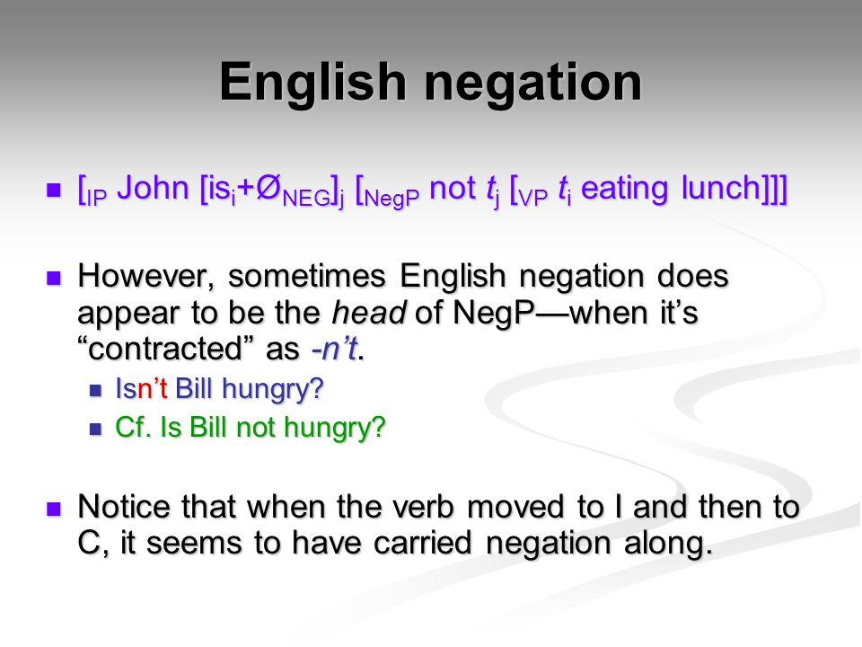English negation [IP John [isi+ØNEG]j [NegP not tj [VP ti eating lunch]]]